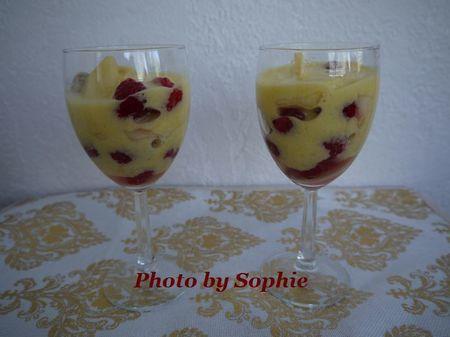 ラズベリーとネクタリンのパフェ・サバイヨンソース